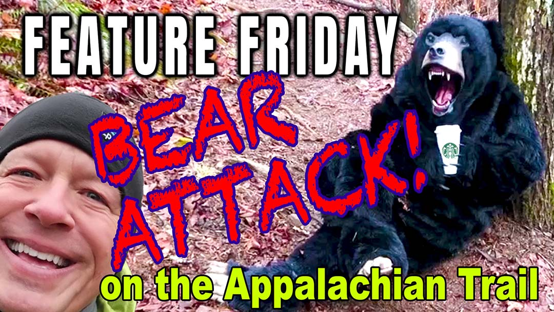 Feature Friday Bear Attack